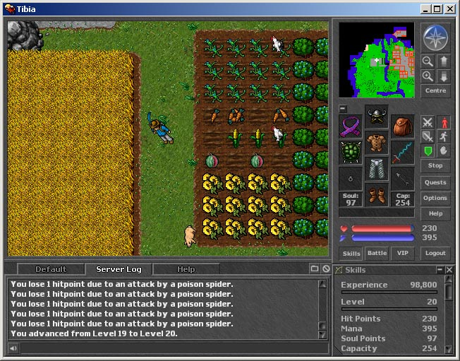 Tibia Review and Download