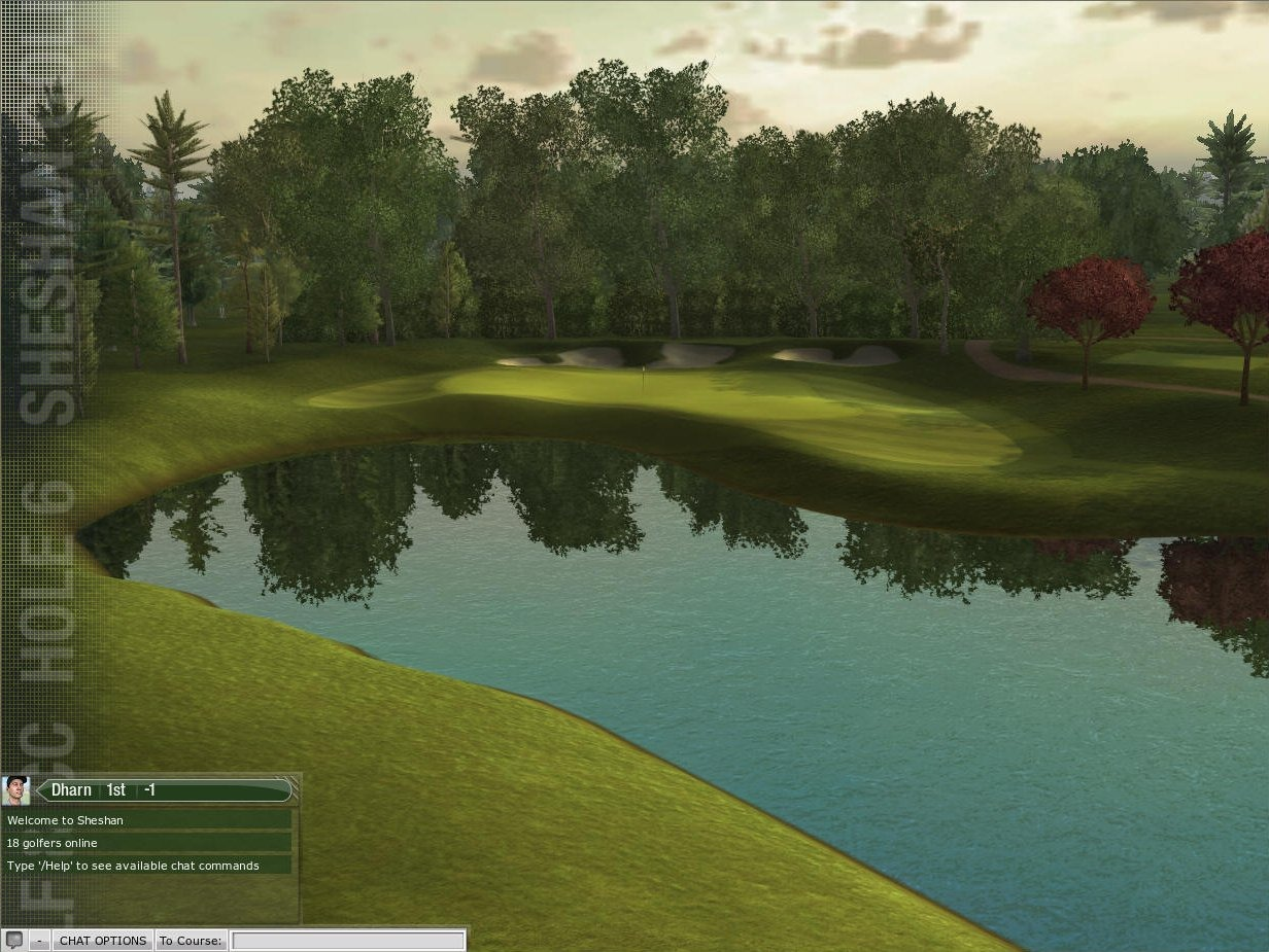tiger woods pga tour online (6)