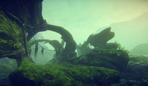 hossin-landscape