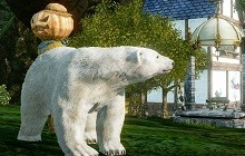 Archage Polar Bear thumb