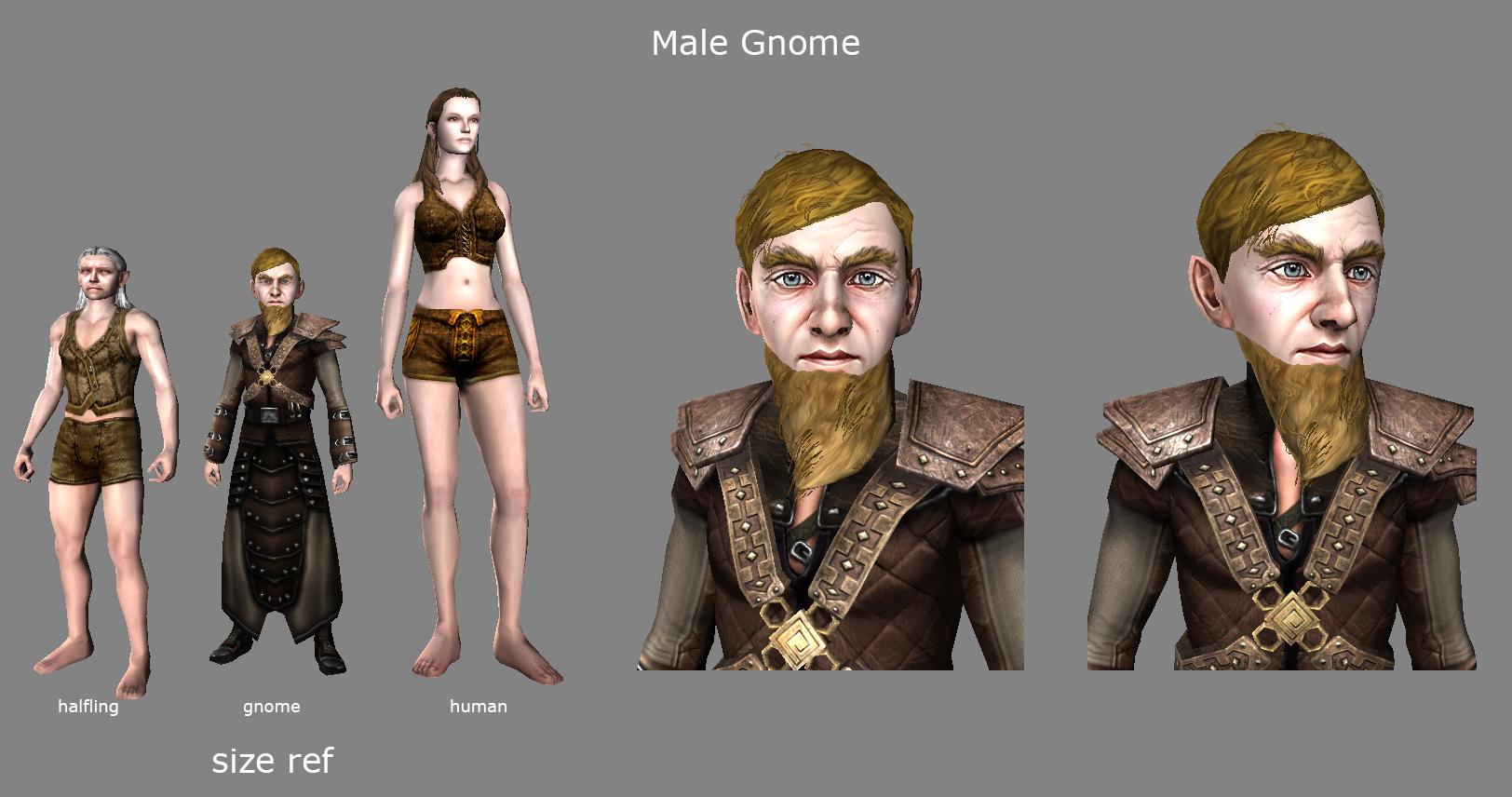 GnomeConceptMale
