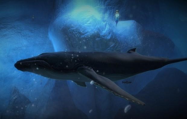 GW2 Whale