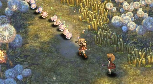 tree of savior