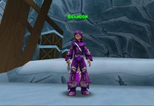 Wizard101 Sells Level 50 Boost