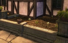 Guild Wars 2 Will Let You Garden In Your Home Instance, Also Giving Out Black Lion Key Today