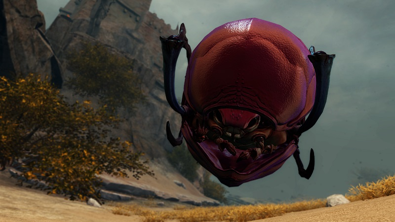 Beetlemania: Our First Impressions of Guild Wars 2's Newest