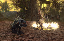 It's Time To Battle Orcs In The Latest Neverwinter Event