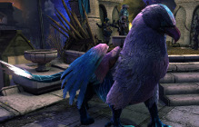 The Siege Of Neverwinter Event Kicks Off Tomorrow Morning