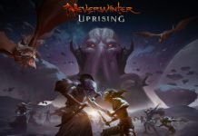 Neverwinter's Next Update Adds New Playable Race
