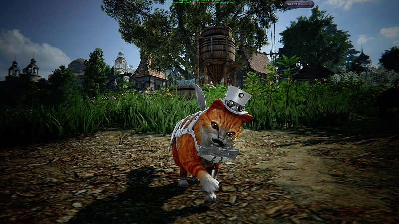 Ascent: Infinite Realm Profiles Cuddly Pets And Mechanical Automatons - MMO Bomb