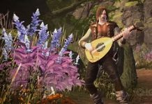 Neverwinter To Add Bards, Its First New Class In Six Years